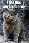 I Can Has Cheezburger: The Untold Story