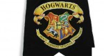 Hogwarts is a Terrible School
