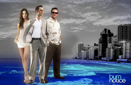 USA v. USA Network: When they watch Burn Notice, the terrorists win.